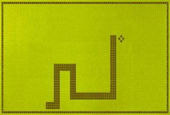 373573999_Snake_xlarge